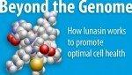 Anti-cancer Fighting Properties of Lunasin